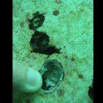03-inspecciones-submarinas